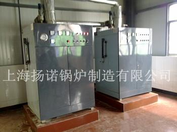 简介:上海扬诺锅炉有限公司是一家专业致力于小型蒸汽锅炉、热水